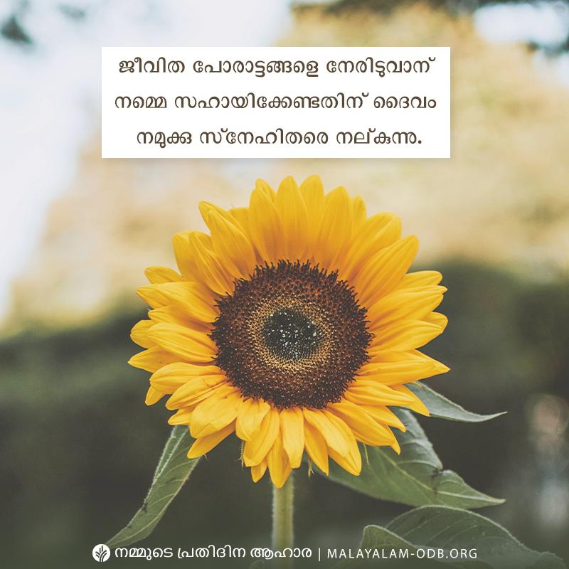 Share Malayalam ODB 2019-05-09