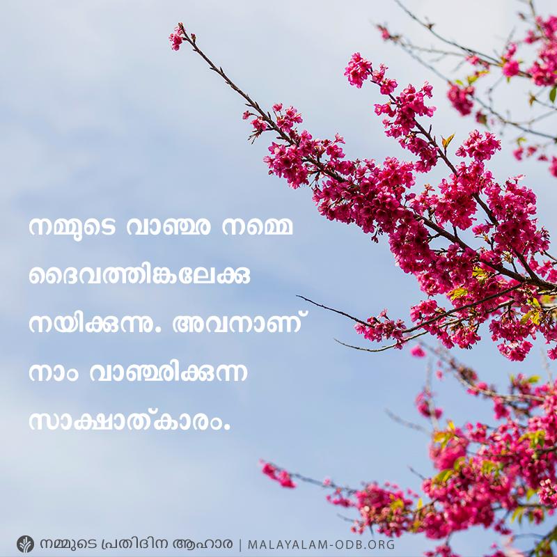 Share Malayalam ODB 2019-05-13