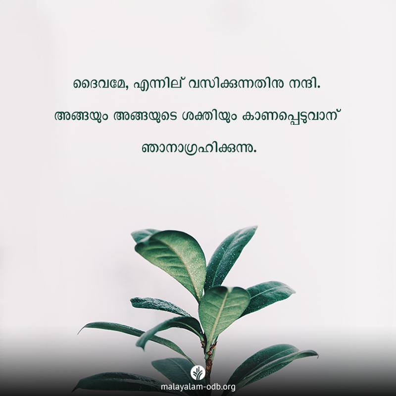 Share Malayalam ODB 2020-01-28