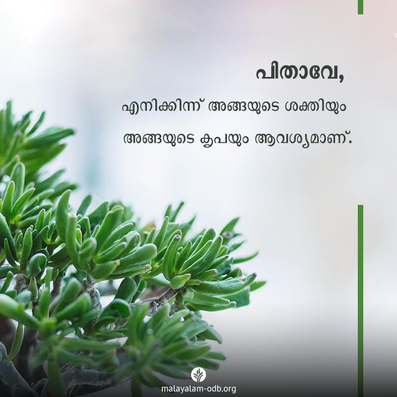 Share Malayalam ODB 2020-01-30