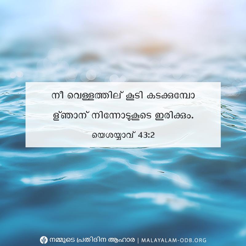 Share Malayalam ODB 2019-08-11