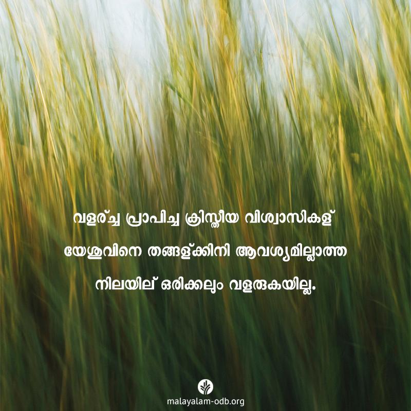 Share Malayalam ODB 2019-11-26