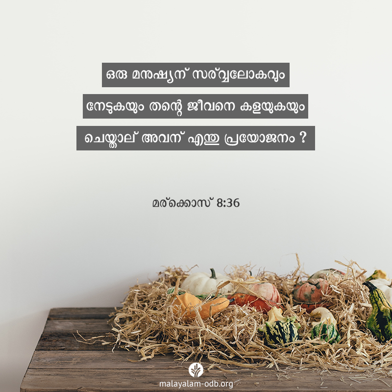Share Malayalam ODB 2019-11-27