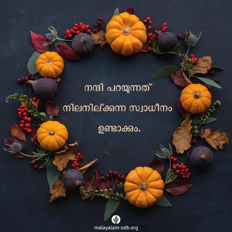 Share Malayalam ODB 2019-11-28