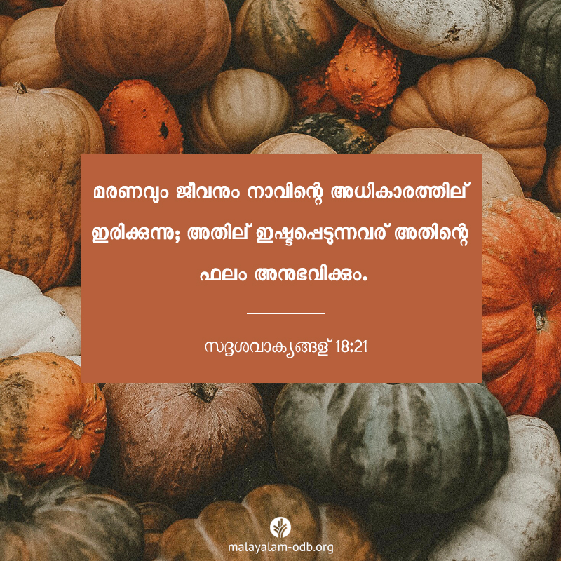 Share Malayalam ODB 2019-11-29
