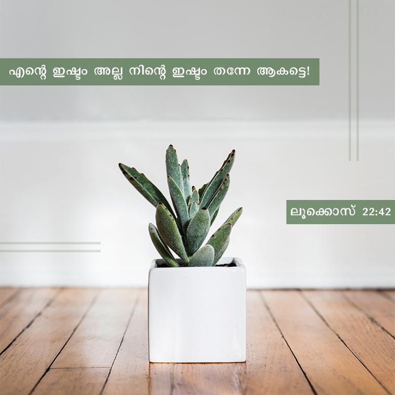Share Malayalam ODB 2020-04-01