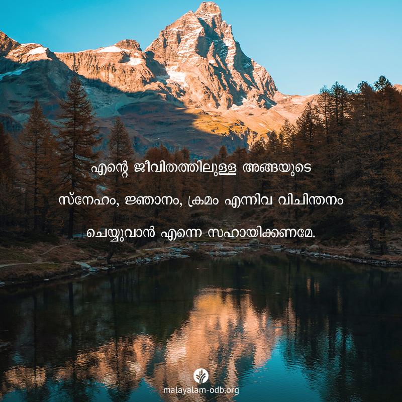Share Malayalam ODB 2020-07-27