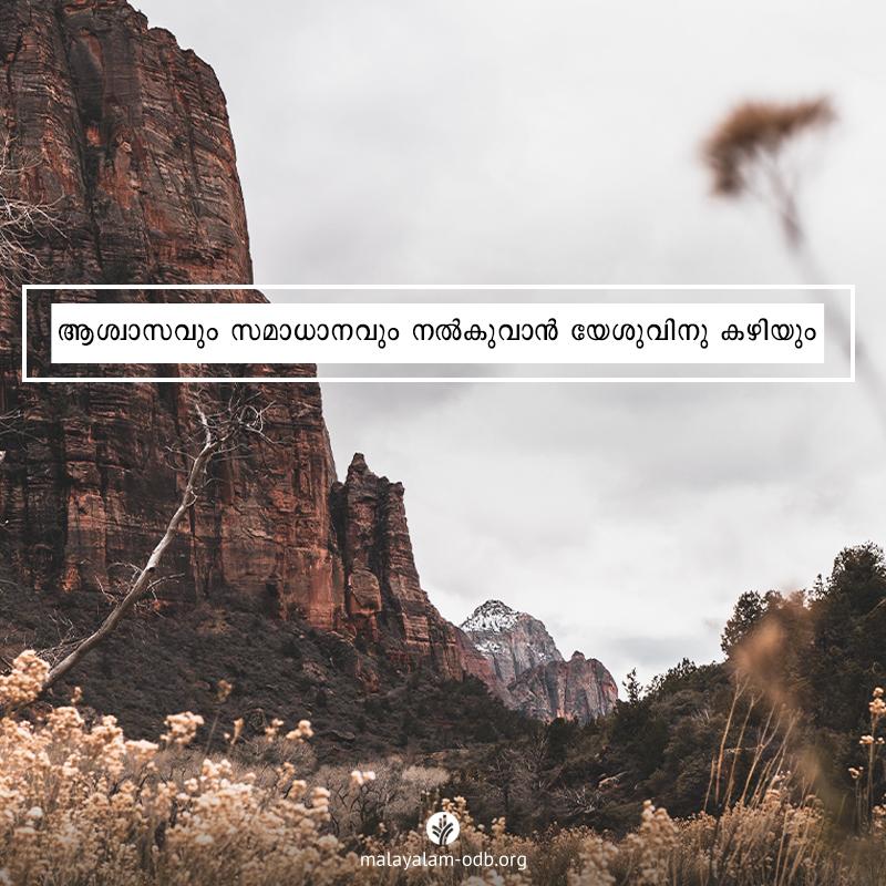 Share Malayalam ODB 2020-07-28
