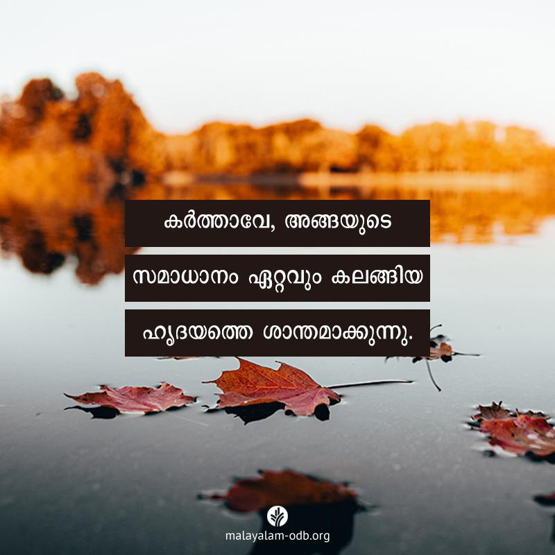 Share Malayalam ODB 2020-11-21