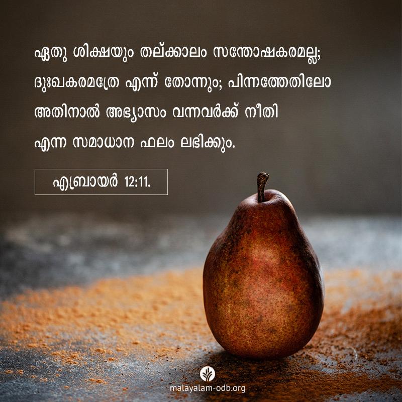Share Malayalam ODB 2021-04-27